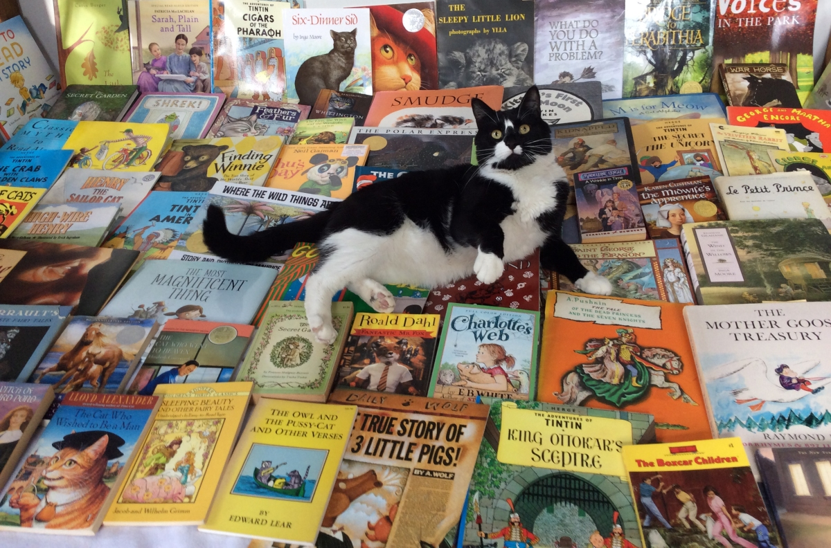 Books and Cats (Go Together Like a Horse andCarriage)