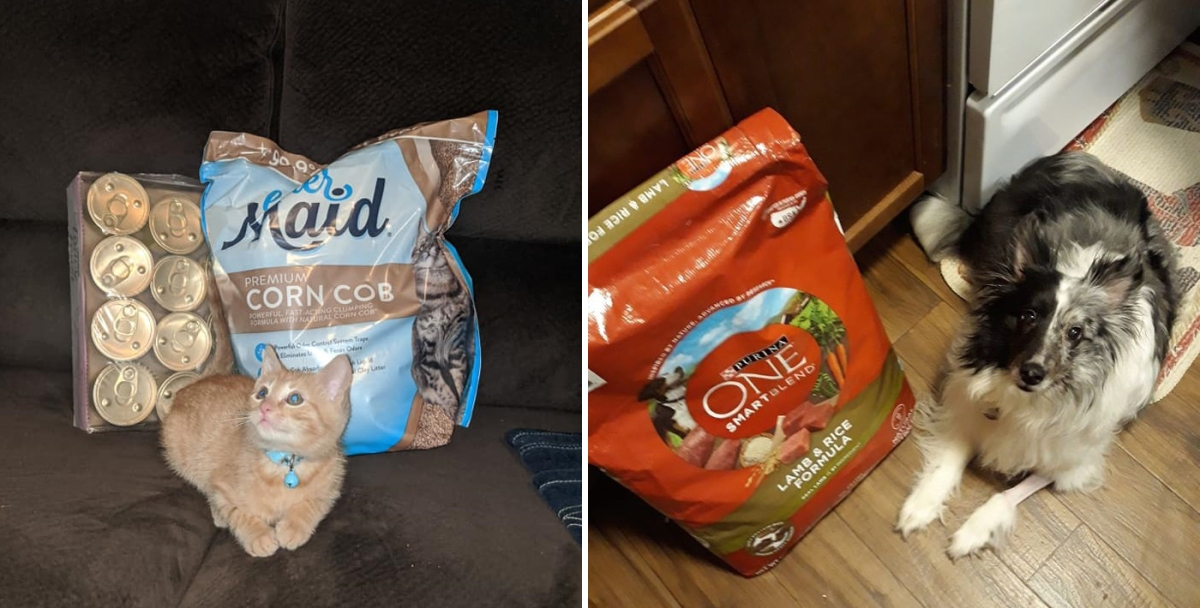 Helping Pet Owners During  the Pandemic:   One Bag of Pet Food At a Time